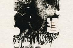 Plamenko Cengic, Exlibris Iris, 2014, mixed media