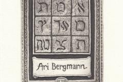 Peter Ford, Exlibris Mr. Ari Bergmann, C3, C5, 12.2x9.8 cm, 2013