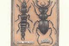 Peter Ford, Exlibris dr. Michael McCaldin, C3, C5, 14.8x9.8 cm, 2021