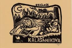 Kalashnikova_Alexandra_The_world_of_dreams