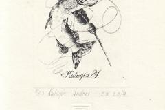 Andrei Kalugin, Exlibris Kalugin Y., 10/8 cm, C3, 2017