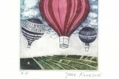 Jana Kasalova, Exlibris Emil Dubsky