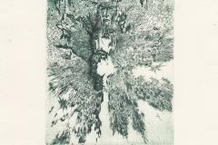 Oleg Naboka, Exlibris Jordan Petkov, C3, C5, C7, 14.3x10 cm, 2021