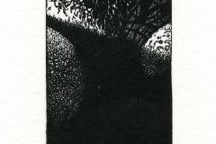 Janusz Poplawski, Exlibris A., 2014, X3