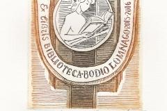 Bachvarov_Ivan_Biblioteca_bodio_Lomnago
