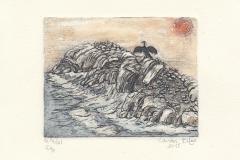 Bilge_Canan_Cormorant_on_the_rocks