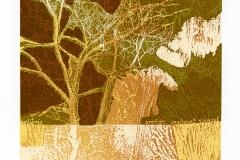 Vedat_Colak_Tree_of_life