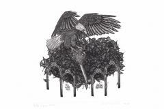 Pawel Delekta, Exlibris Lecha Kubika, 2015, 12/ 12 cm, own technique