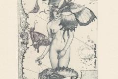 """Gunter Hujber, """"Girl with butterflies"""", 2015, 14.8/ 10.5 cm, C2, C3, C4"""