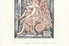 "Vera Stanishevskaja, ""Angel - Dmitrii Frolov"""